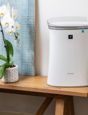 Sharp Air Purifier on a surface