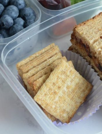 Sandwhich in a containerwith crackers, blueberries, and strawberries.