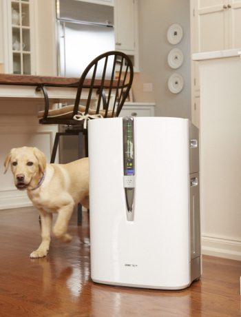 Woman and daughter in a kitchen with theitr dog next to an air purifier.