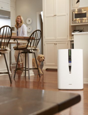 Dog and a woman in a kitchen next to an air purifier.