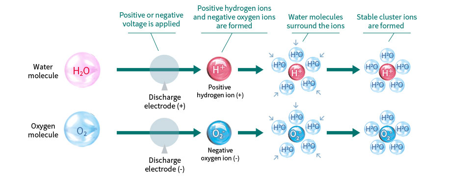 Plasmacluster technology generates positive hydrogen ions (H⁺) and negative oxygen ions (O₂⁻)