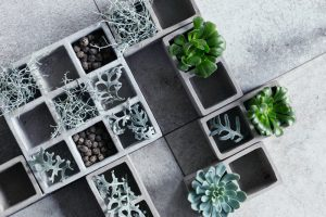 Concrete planters with plants in them.