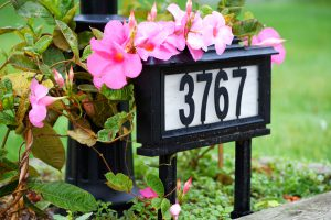House number and plants at the entrance of the driveway.