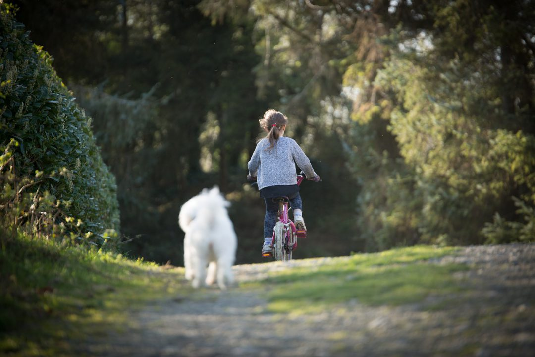 Child biking outdoors with dog