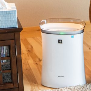 Sharp air purifier in living room