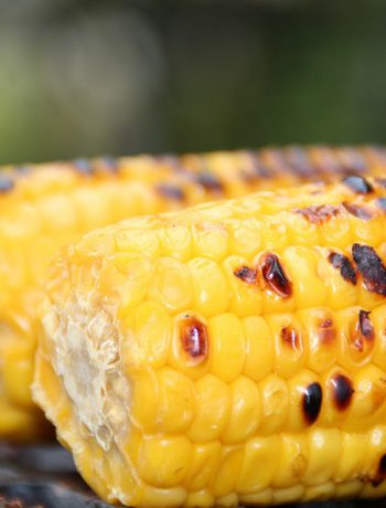 Grilled corn on the cob on a surface outside.