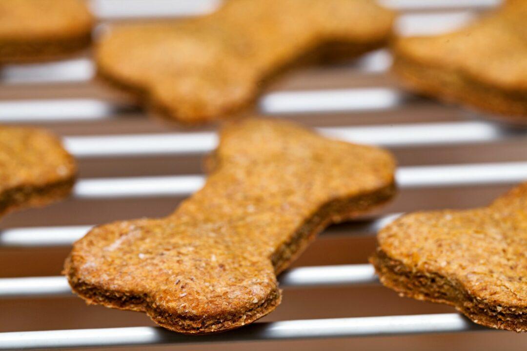 dog treats on a baking rack