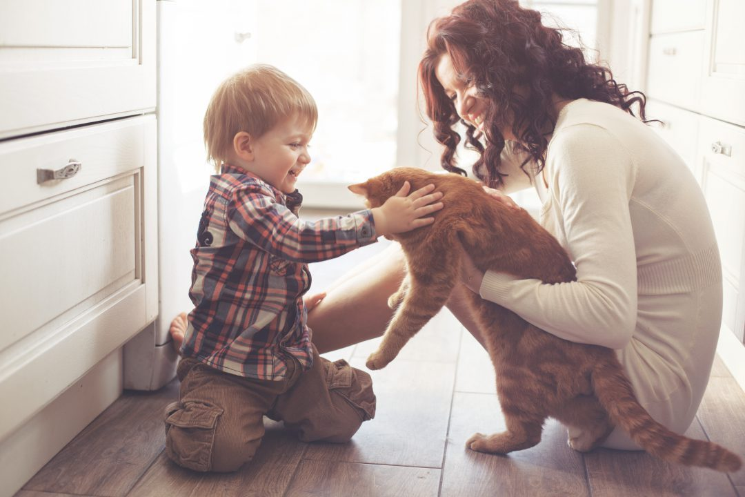Mother and son playing with their cat on the kitchen floor.