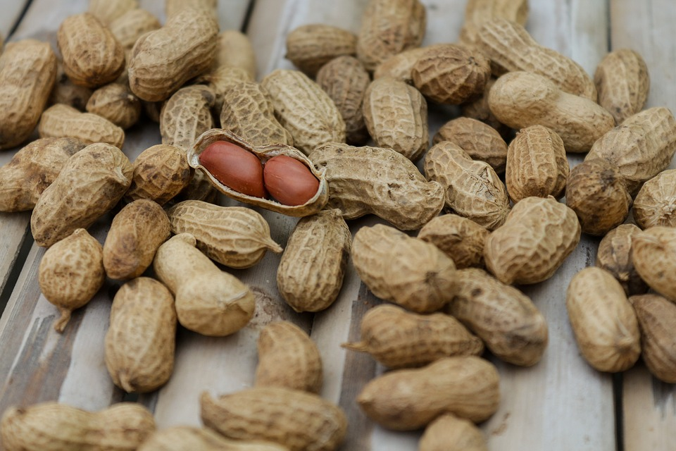 Peanut shells spread across a wooden table.