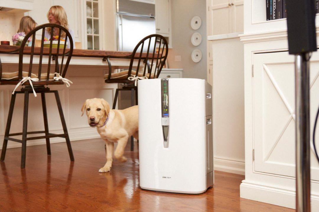 Air purifier on a kitchen floor next to a dog and family in the background.