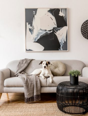 Black and white living room design with a dog on a couch