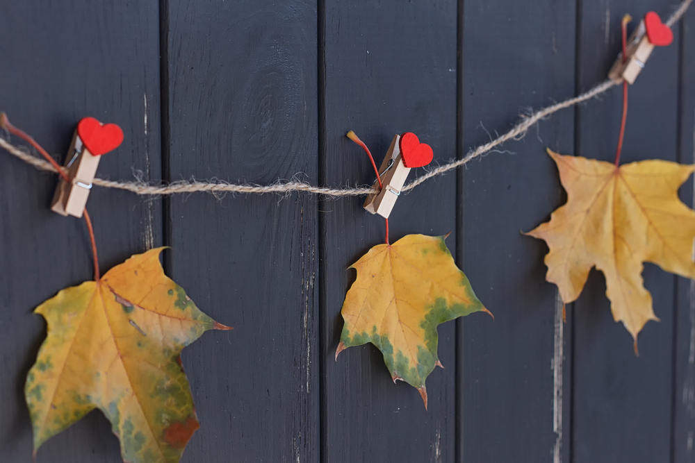 Leaves on clothespins