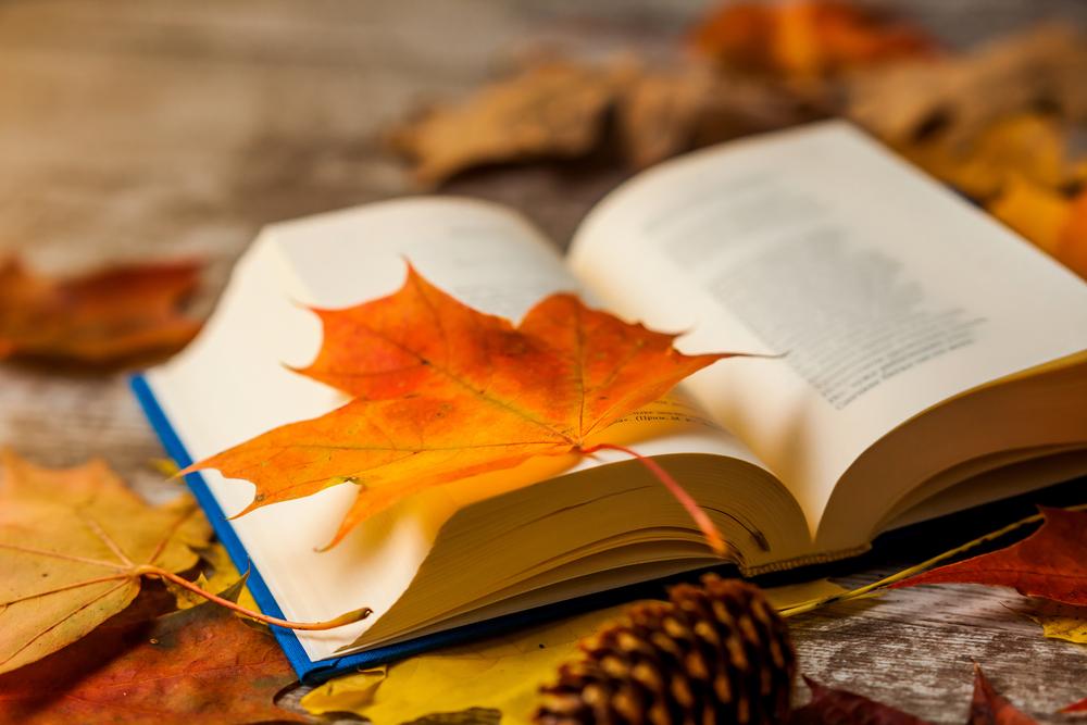 Orange leave in book